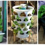 Így ültess függőlegesen zöldségeket! Mutatunk néhány remek ötletet!