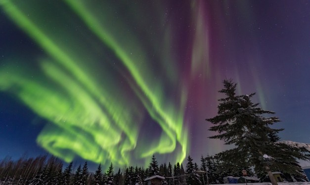 Alaska para viajeros sin límites