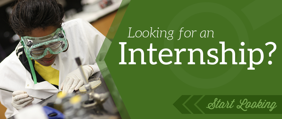 Internships \u2013 CAREER CORNER