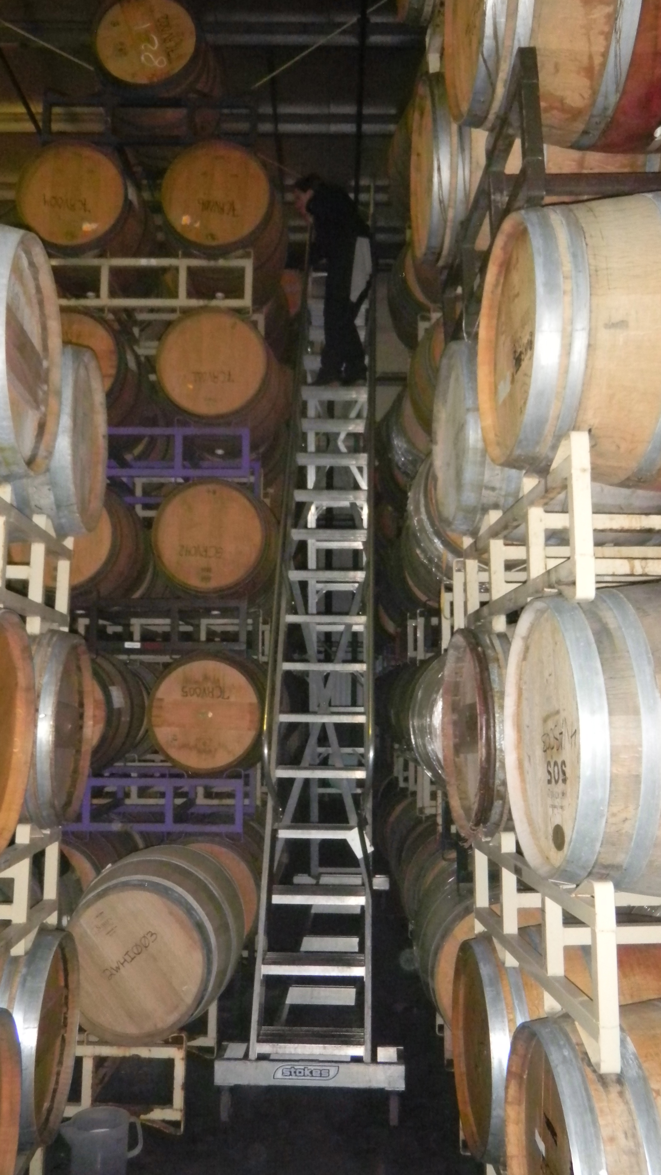 110 Camino Oruga Napa Ca Bin To Bottle Continued Days 3 And 4 Viticulture And Enology