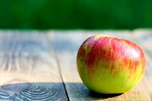 manzana funiber