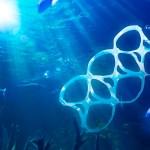 Océanos tendrán más plástico que peces