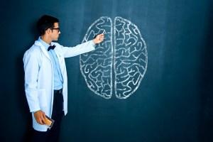 funiber-neurociencias