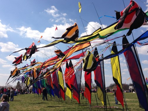 The Blossom Kite Festival is one of the best events during the month-long celebration. Ana Cvetkovic | Hatchet Photographet.