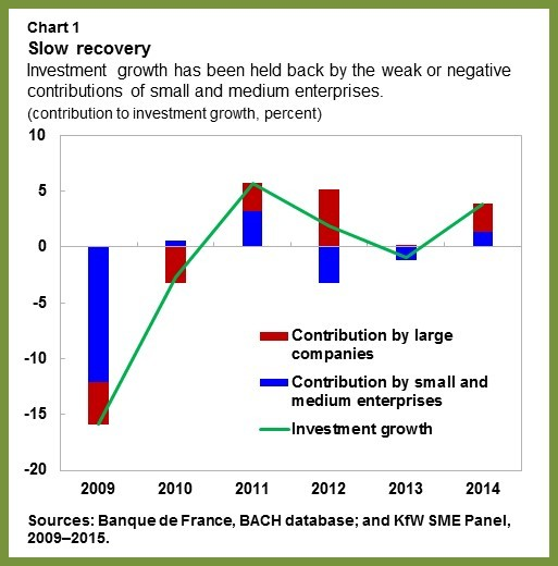 Sluggish Business Investment in the Euro Area The Roles of Small