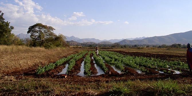 An irrigated field in the Limpopo Basin in South Africa  Photo Credit: IFPRI Images via flickr (http://bit.ly/2a7gorK) CC BY-NC-ND 2.0
