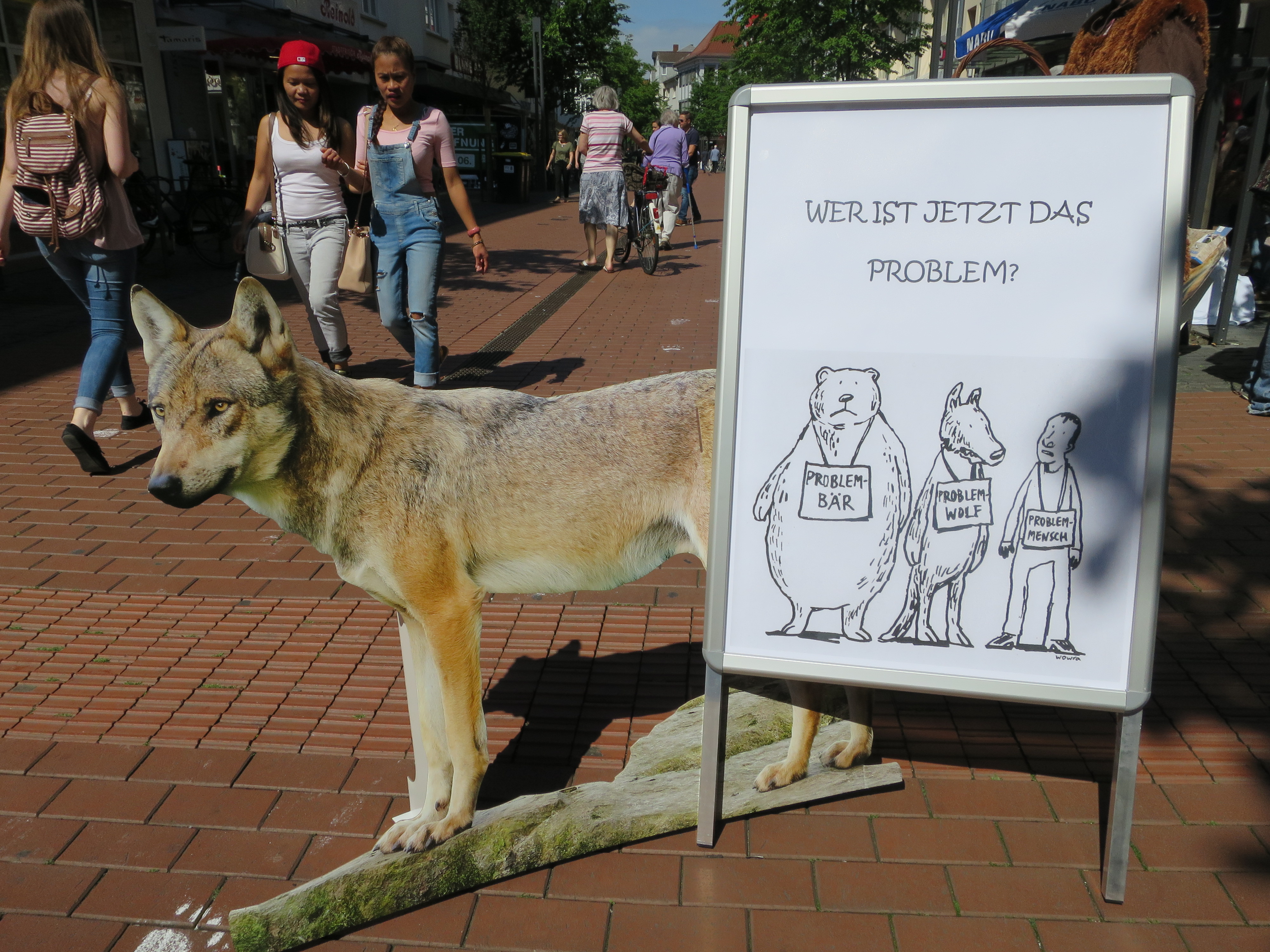 Kinderschminken Wolf Wolf Archive Hessen Blogs