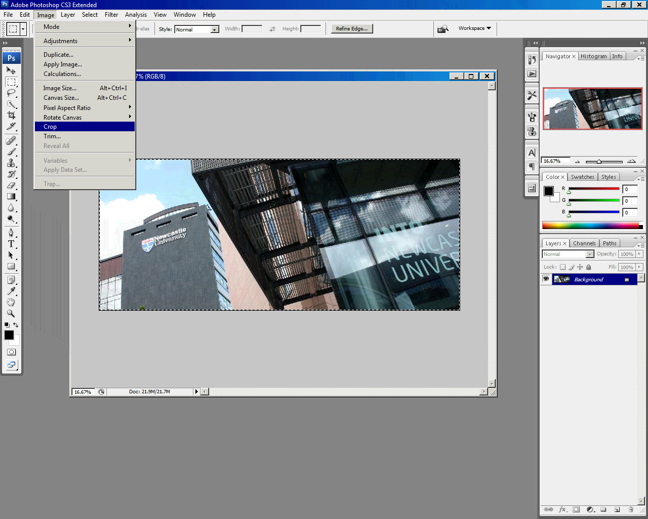 Fullsize Of How To Resize Layer In Photoshop