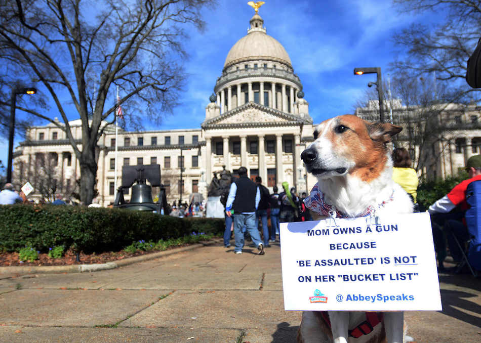 Abby and her owner were among the hundreds gathered to support their right to gun ownership during a gun rally held on the south steps of the state Capitol Saturday afternoon, Jan. 19, 2013 in Jackson, Miss. (AP Photo/The Clarion-Ledger, Vickie D. King)