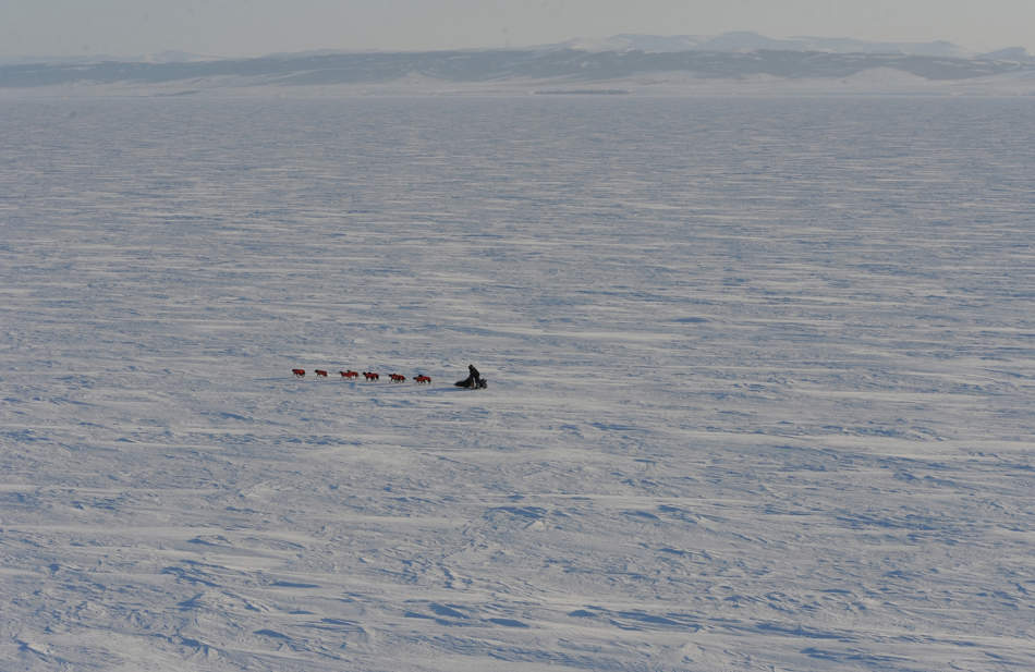 A musher travels across Norton Sound on their way to Koyuk in Alaska during the Iditarod Trail Sled Dog Race on Monday, March 11, 2013. Alaska's famous 1,000-mile Iditarod Trail Sled Dog Race has come down to a furiously contested sprint among veterans, with one seasoned musher grabbing the lead from another Monday and several others within striking distance.  (AP Photo/The Anchorage Daily News, Bill Roth)