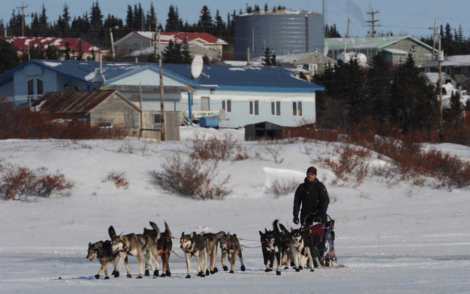 Aaron Burmeister leaving Koyuk in Alaska during the Iditarod Trail Sled Dog Race on Monday, March 11, 2013. (AP Photo/The Anchorage Daily News, Bill Roth)