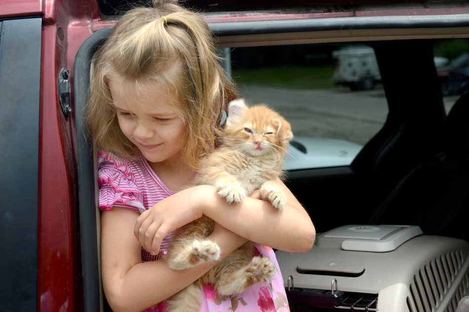 DAVID ZALAZNIK/JOURNAL STAR Mia Frieden stands in her family's van Wednesday, June 4 with her new kitten, soon to be named Tippy, obtained from the Peoria County Animal Protection Services in Peoria.