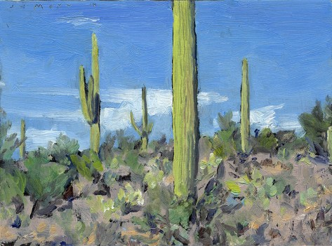 Jim Mott's saguaro from his stay in Tuscon