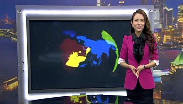 China Business Network Anchor Liu Ye