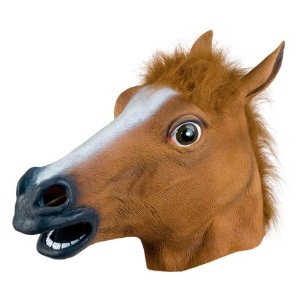 Photo of a horse mask