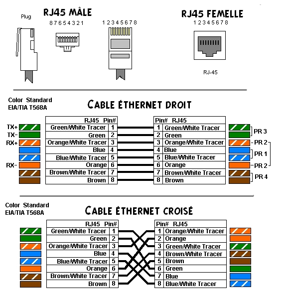 For The Cat 5 Cable Rj45 Jack Wiring Diagram Rj45 Sch 233 Ma De Cablage Blog Technique Informatique