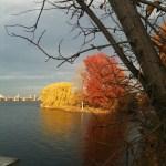 Fall along the Charles River Esplanade