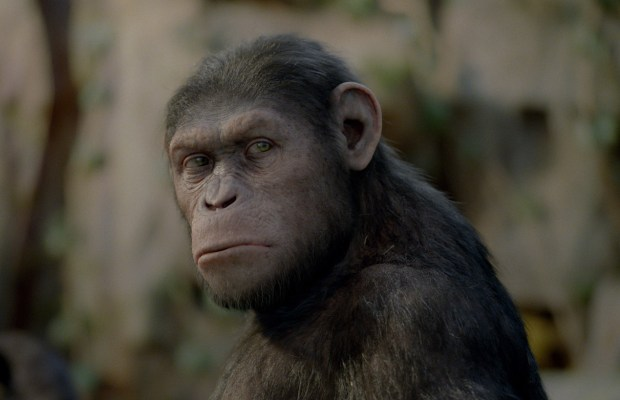 Rise of the Planet of the Apes - 10