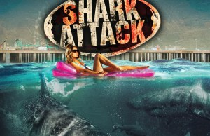 Jersey Shore Shark Attack - FINAL BD FLAT
