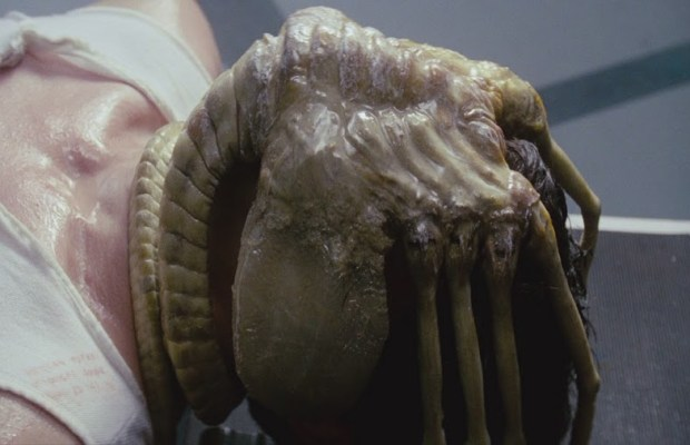 Holy Sh!t! NECA Just Revealed a Life-Size Facehugger With ...