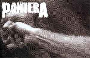 panteravulgardisplaybanner