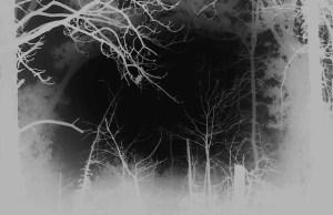 nocturnelarryrussell