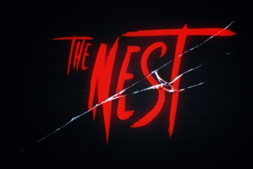 The-Nest-Plate-Website