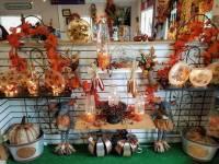 Bloomers Home & Garden Center  Weekly Specials