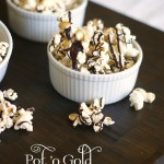 DIY Gourmet Popcorn-You'll Want More Than a Handful