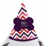 Pink and Purple Chevron Dog Birthday Party Hat