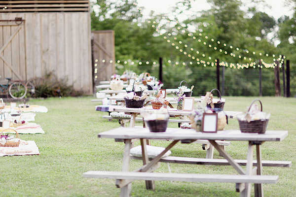 wedding picnic reception