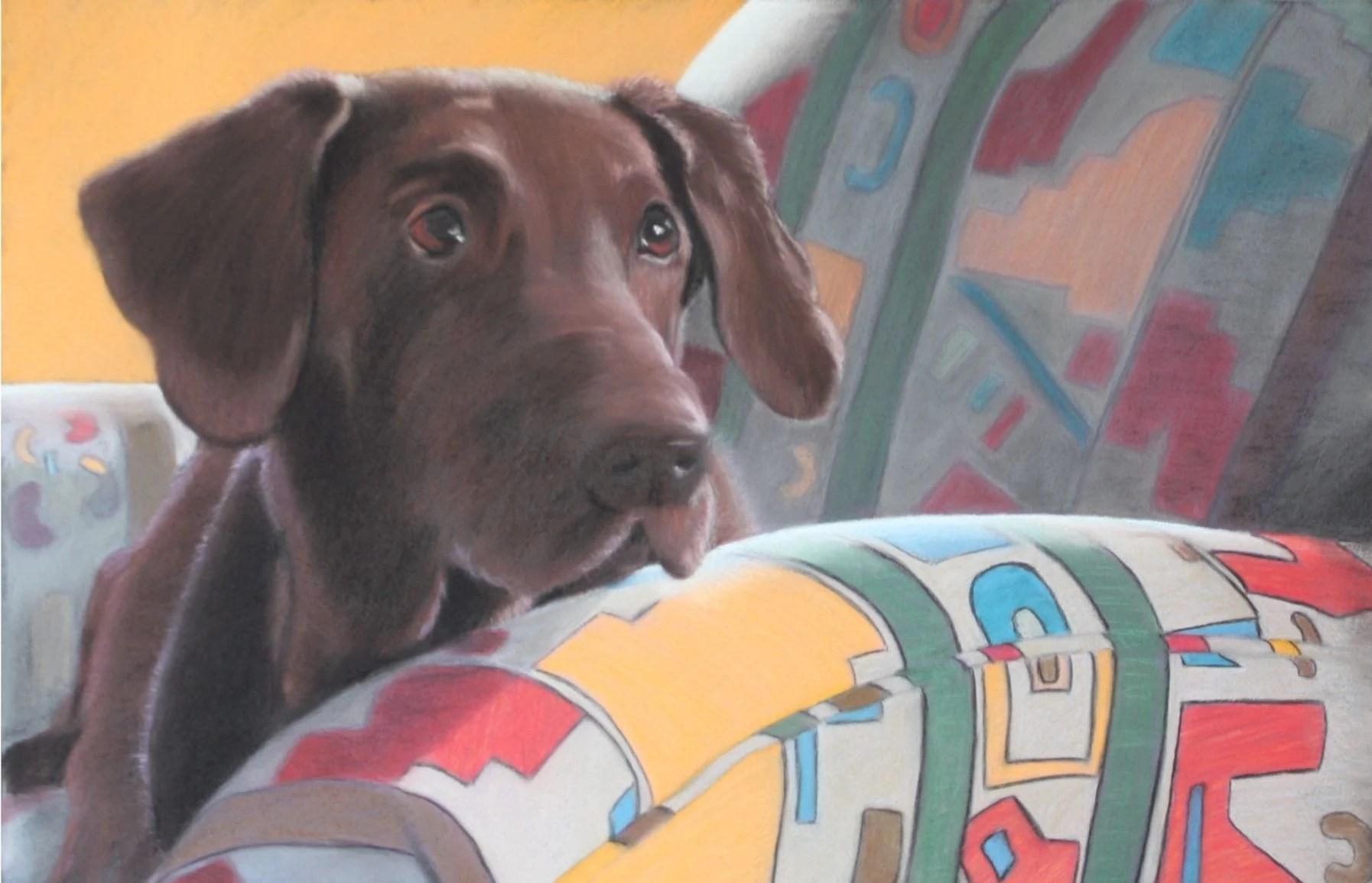 Mutable Moussie Heider Show Spotlights Pets Plants Aaron Rodgers Dog Selfie Aaron Rodgers Dogs Name bark post Aaron Rodgers Dog
