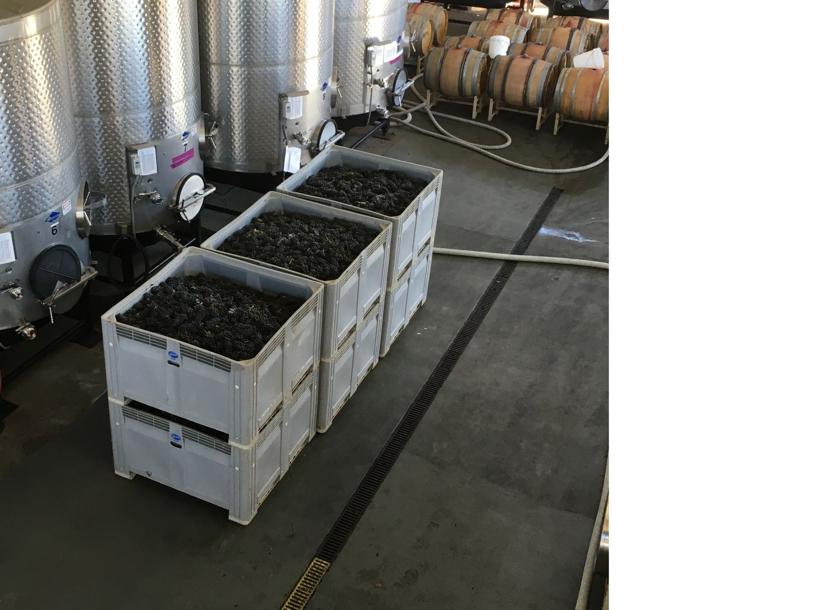 110 Camino Oruga Napa Ca Bigger Bin To Bottle Wins Napa County Planning Commission Approval