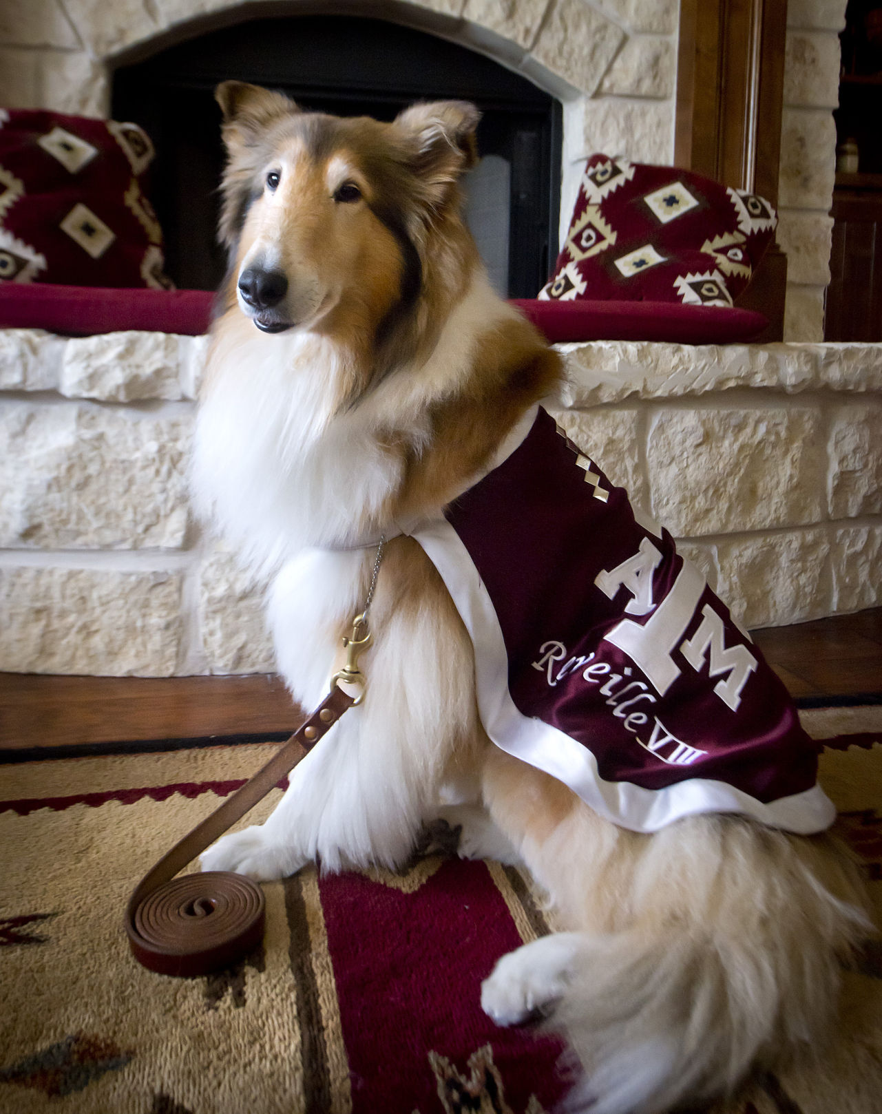 Reveill Reveille Viii Retiring Search Is On For New First Lady Of