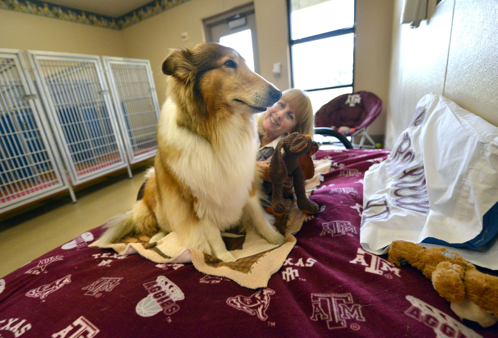 Reveill Reveille Viii Enjoying The Quiet Life Of Retirement Local News