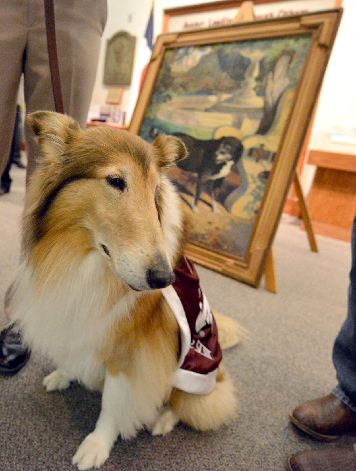 Reveill Texas A M Welcomes Back Reveille I Painting With Re Unveiling