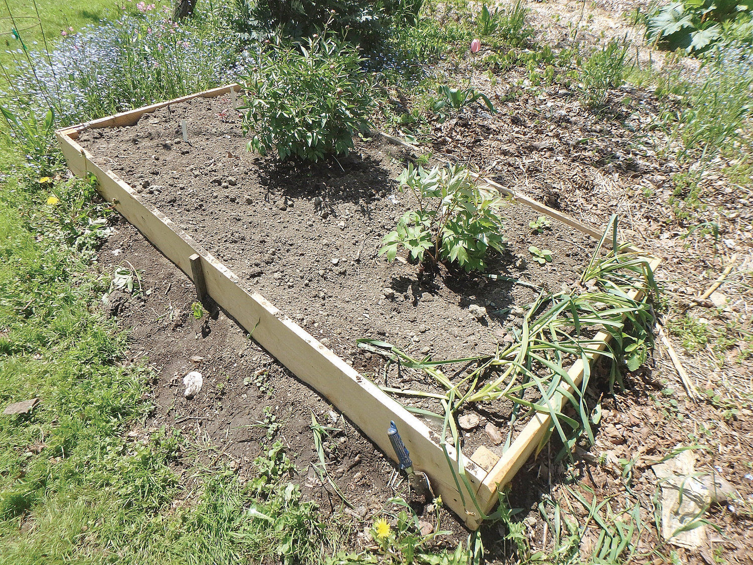 Henry Homeyer Tips For Building Raised Beds For Your Garden Community News Reformer Com
