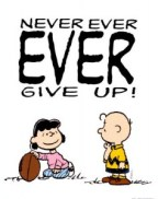 dont give up, never give up, persistence, perseverance, success