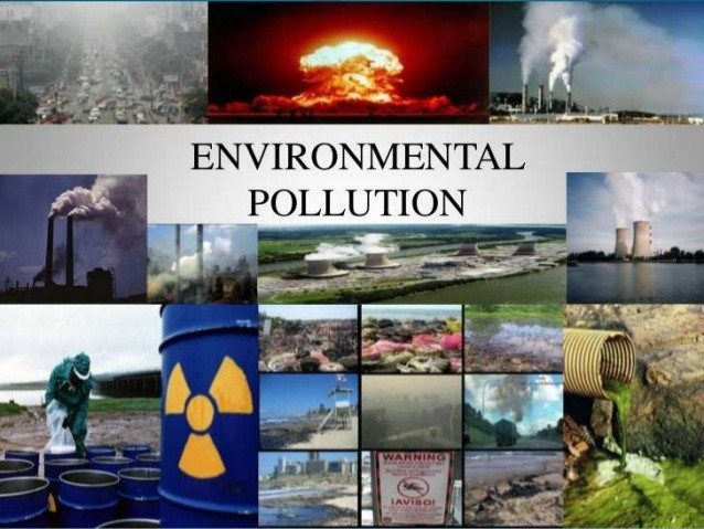 How Can We Help Control Environmental Pollution? - Blue and Green