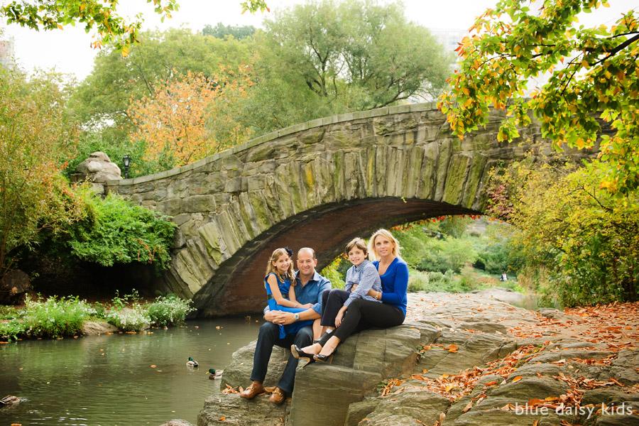 Fall Daisy Wallpaper Central Park Family Portraits Manhattan Family