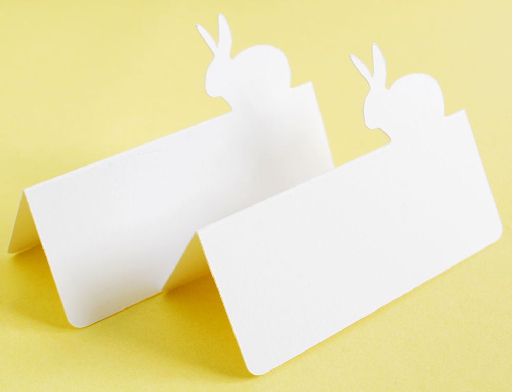 Bunny Rabbit Tent style Place Cards Set of 24 - buy place cards