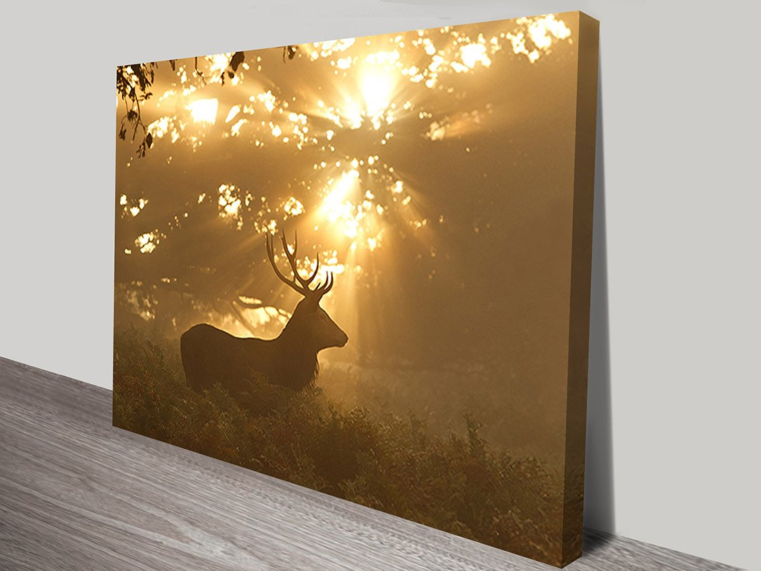 Canvas Printing Perth Canvas Art Prints Perth Wall Canvas Picture Printing Australia