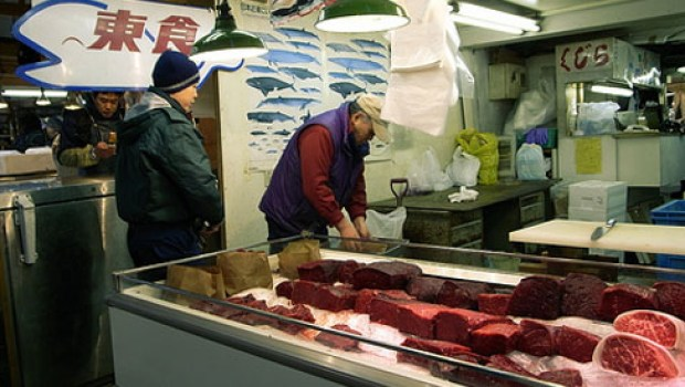Whale meat sold in Japan