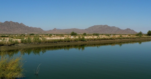 Gila Bend Shrimp Farm