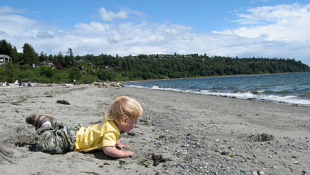 MRSA found at Puget Sound beaches