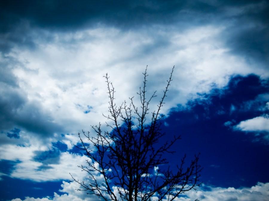 Black, blue