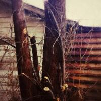 Rusty and Ragged | Blurbomat.com
