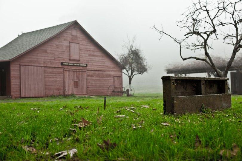 Wandering Old Barn on Foothills