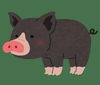 animal_kurobuta_pig.png