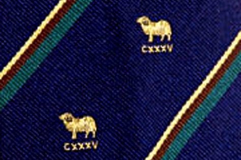 Detail from the Young's 135 Association official tie.